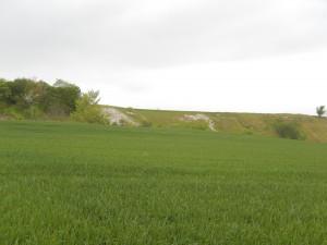 Stora kalk- och sandåsar som påminner om Wiltshires vita hästar.